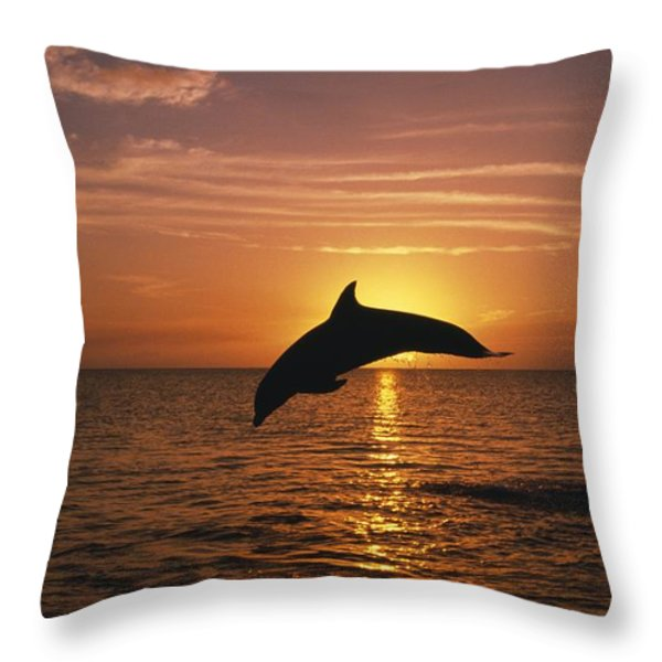 Silhouette Of Leaping Bottlenose Throw Pillow by Natural Selection Craig Tuttle