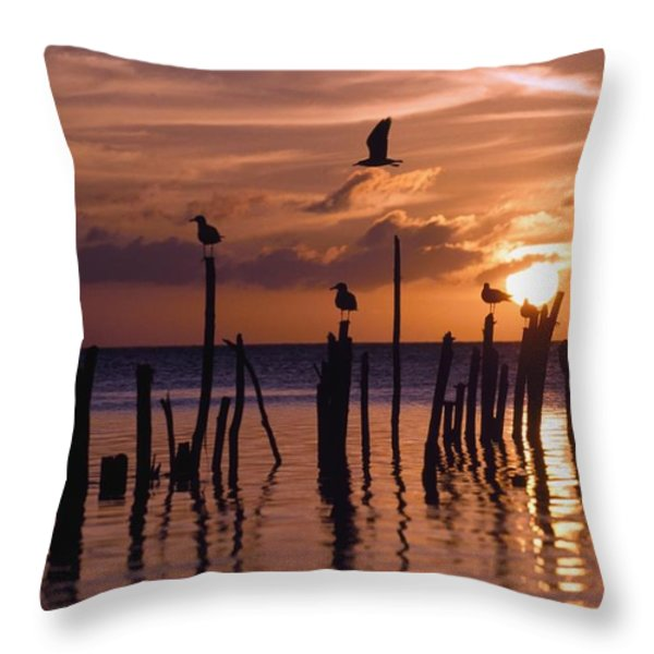 Silhouette Of Seagulls On Posts In Sea Throw Pillow by Axiom Photographic