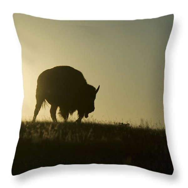 Silhouettes Of Roaming Bison Throw Pillow by Pete Ryan