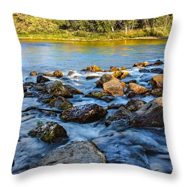 Silk Water Throw Pillow by Robert Bales