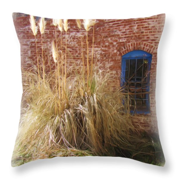 Silver City Tranquility Throw Pillow by FeVa  Fotos