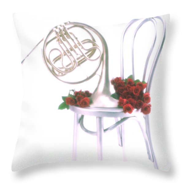 Silver French horn on silver chair Throw Pillow by Garry Gay