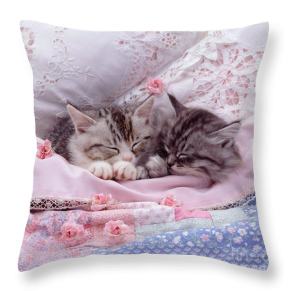 Silver Tabby Kittens Throw Pillow by Jane Burton