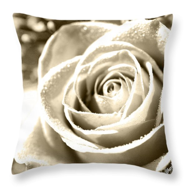 Simple Throw Pillow by Cheryl Young