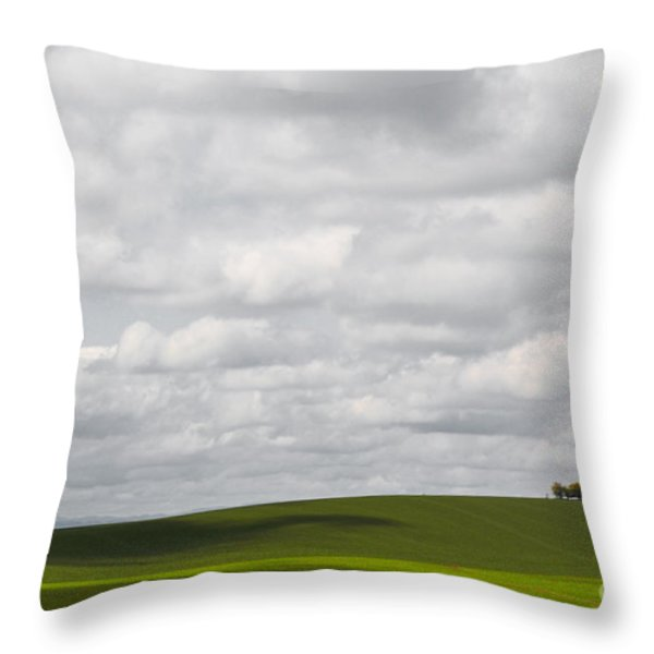 Simple Field Throw Pillow by Andrea Hazel Ihlefeld