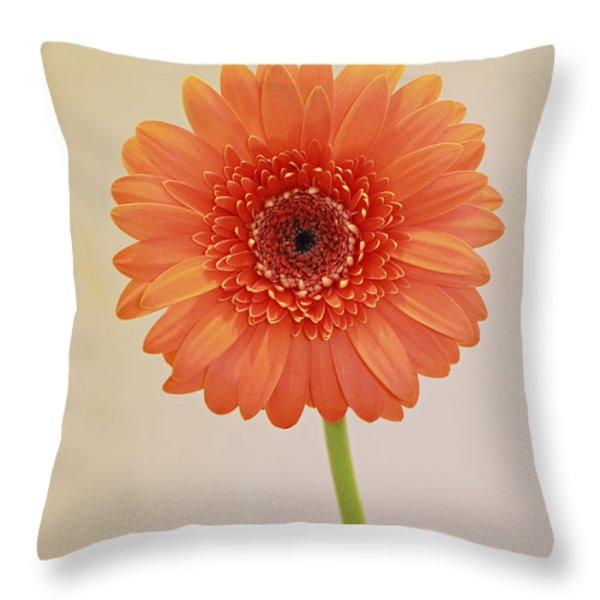 Simple Pleasures Throw Pillow by Inspired Nature Photography By Shelley Myke