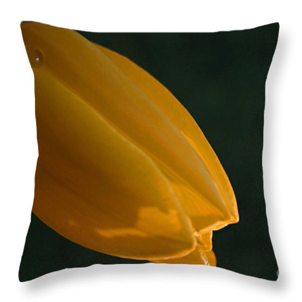 Single Again Throw Pillow by Sherry Hallemeier