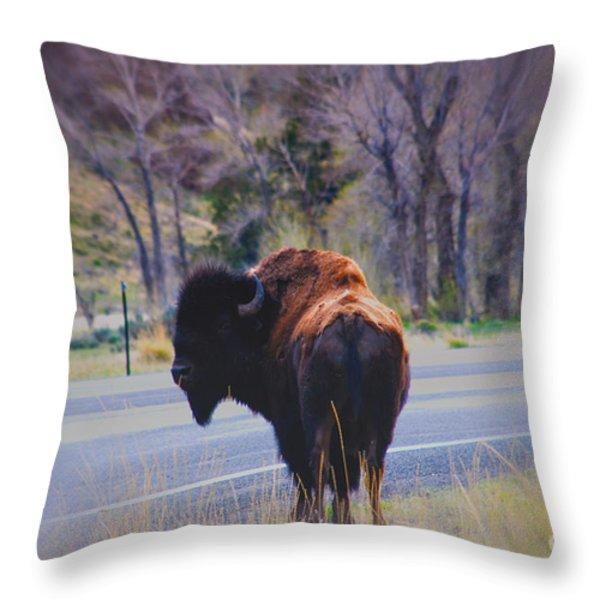 Single Buffalo in Yellowstone NP Throw Pillow by Susanne Van Hulst