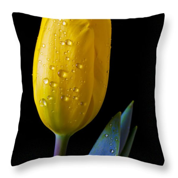Single Yellow Tulip Throw Pillow by Garry Gay
