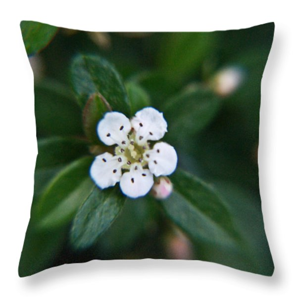 Skull Ghost Flower 2 Throw Pillow by Douglas Barnett