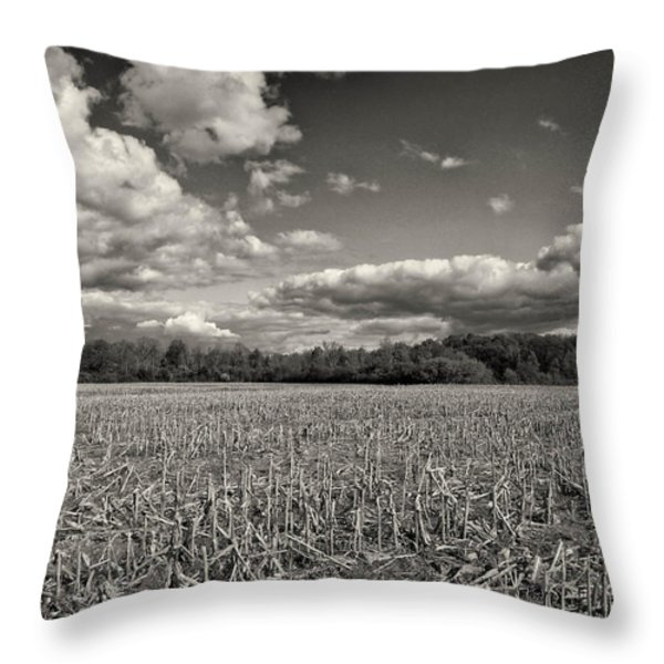 Skyway Throw Pillow by Rachel Cohen