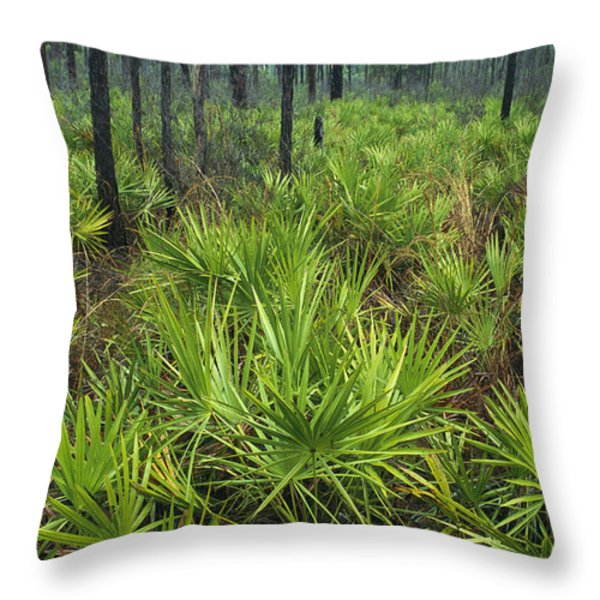 Slash Pines And Saw Palmettos Throw Pillow by Klaus Nigge
