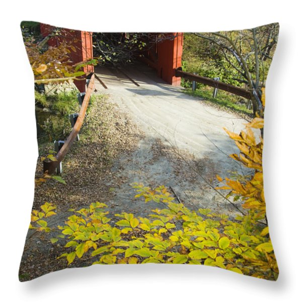 Slaughter House Bridge And Fall Colors Throw Pillow by James Forte