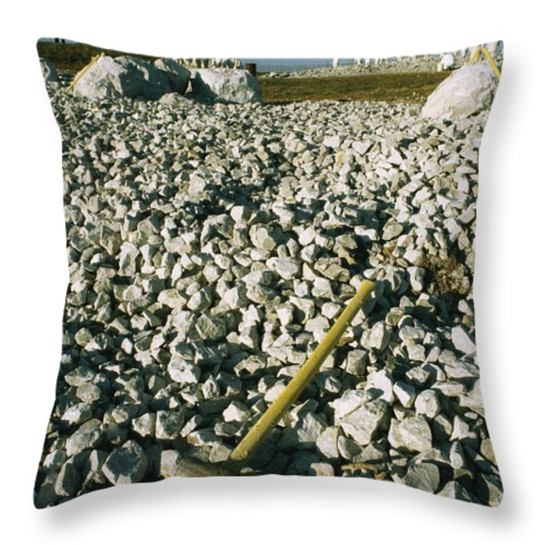 Sledgehammer In A Field Of Rock Throw Pillow by Bill Curtsinger