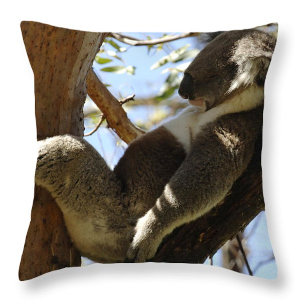 Sleeping Koala Throw Pillow by Bob Christopher