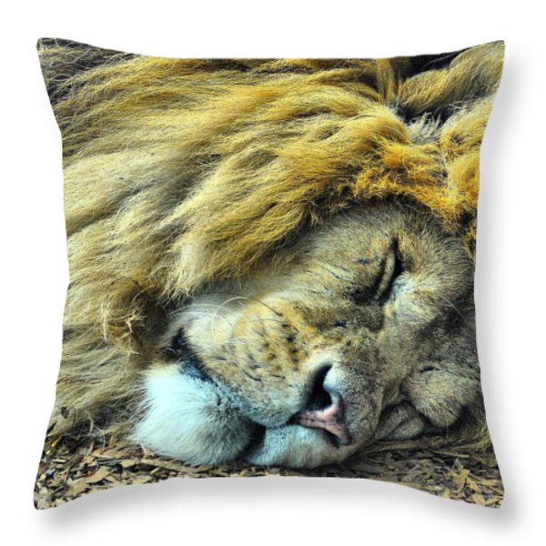 Sleeping Lion Throw Pillow by Chris Thaxter