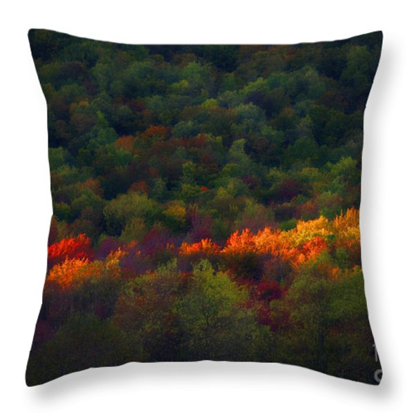 Slice Of Light Evening In Fall Throw Pillow by Dan Friend