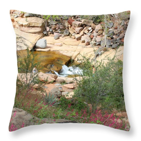 Slide Rock with Pink Wildflowers Throw Pillow by Carol Groenen