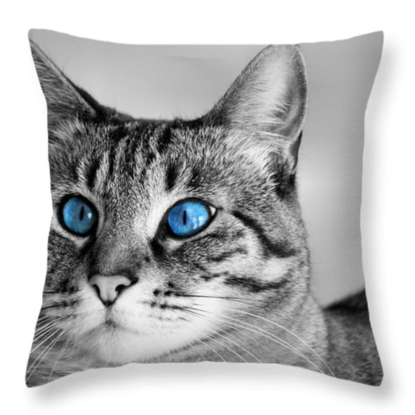 Slinky Throw Pillow by Kristin Elmquist