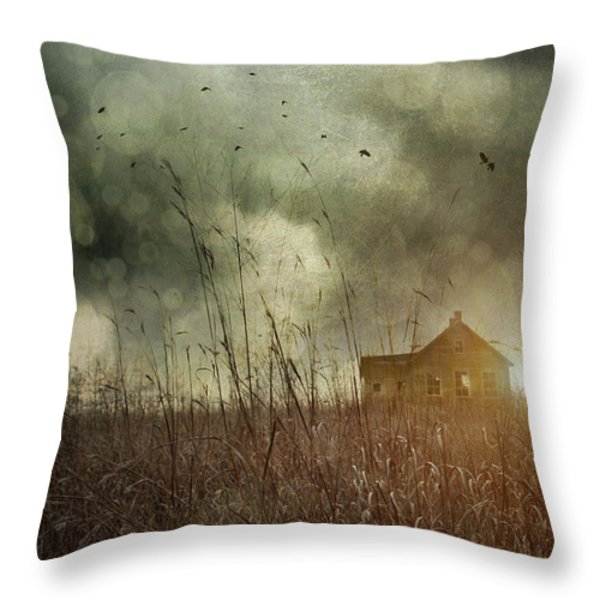 Small abandoned farm house with storm clouds in field Throw Pillow by Sandra Cunningham