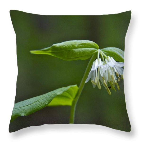 Small-flowered Fairy Bell Throw Pillow by Sean Griffin