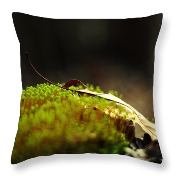 Small World Throw Pillow by Rebecca Sherman