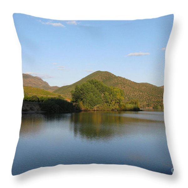 Smooth Sailing On The Douro Throw Pillow by Arlene Carmel