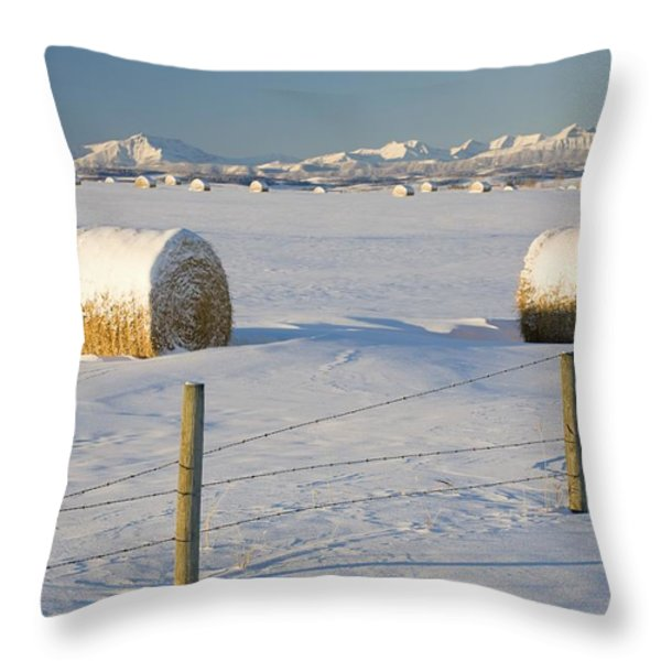 Snow Covered Hay Bales In A Snow Throw Pillow by Michael Interisano