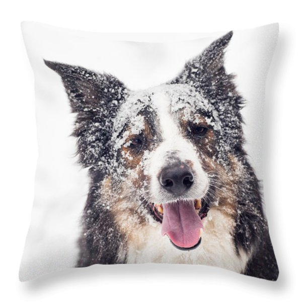 Snow Covered Throw Pillow by Joye Ardyn Durham