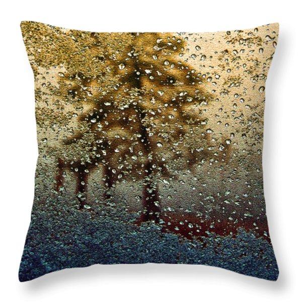 Snow On My Window Throw Pillow by Ellen Heaverlo