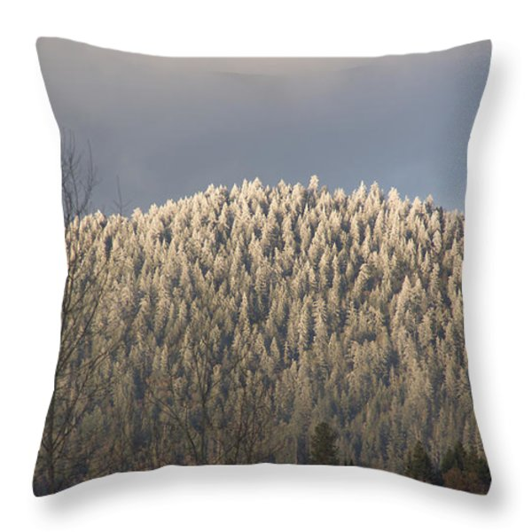 Snowlight Throw Pillow by Mick Anderson