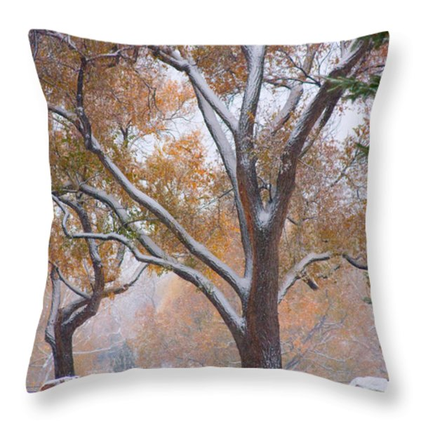 Snowy Autumn Landscape Throw Pillow by James BO  Insogna
