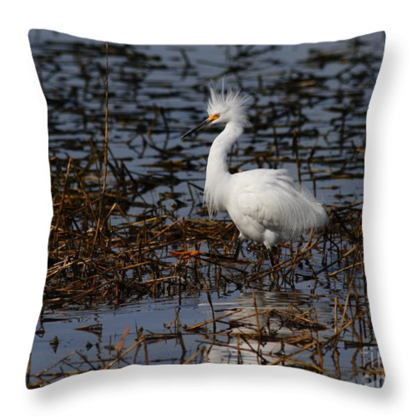 Snowy Egret . Solitude . 7d11963 Throw Pillow by Wingsdomain Art and Photography