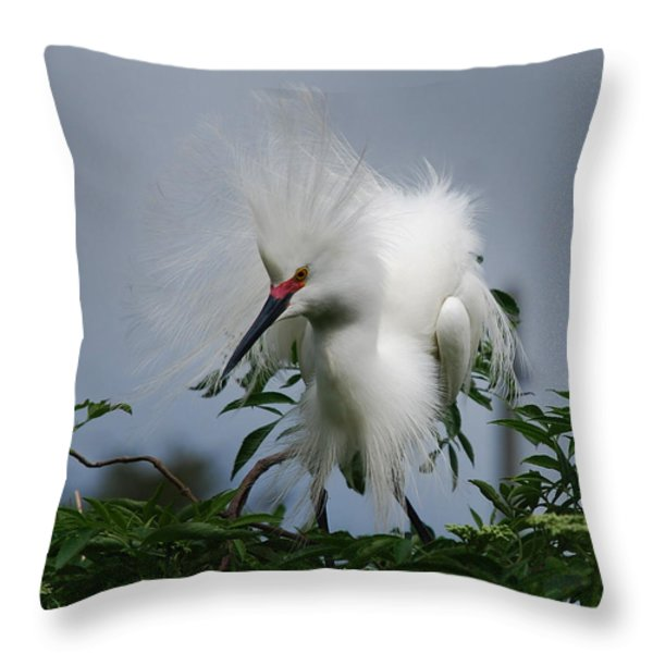 Snowy Stand Off Throw Pillow by Skip Willits