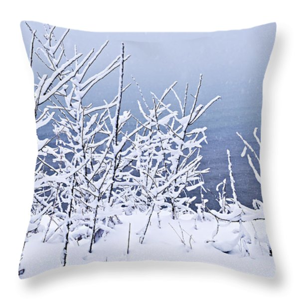 Snowy trees Throw Pillow by Elena Elisseeva
