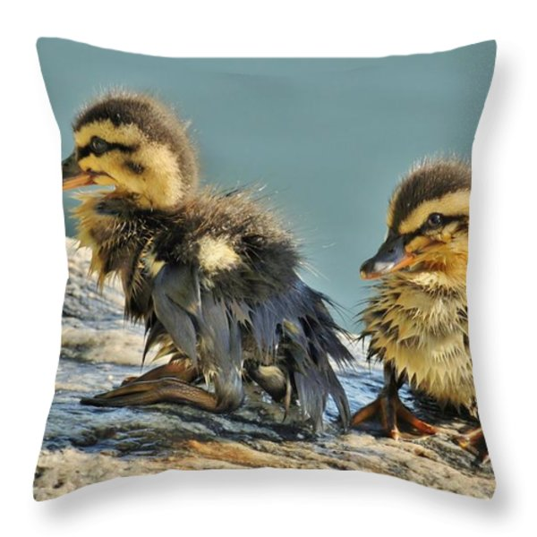 Soaked Throw Pillow by Cindy Fullwiler