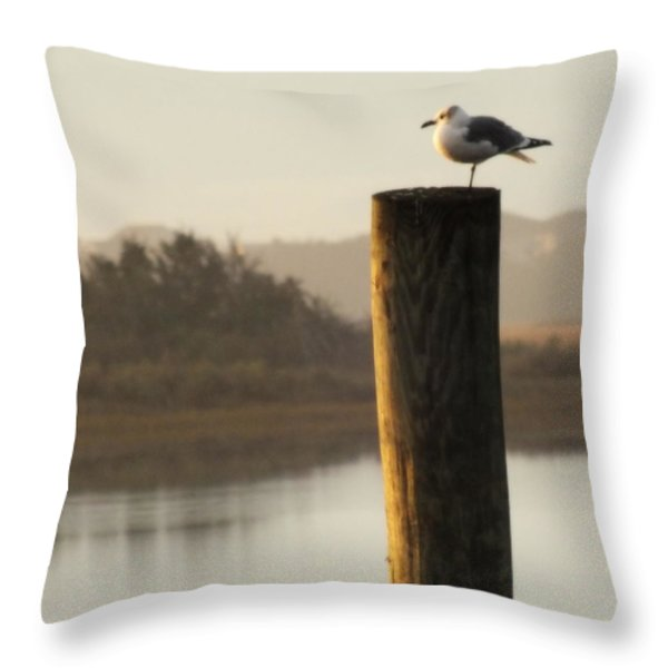 SOFT MORNINGS Throw Pillow by KAREN WILES
