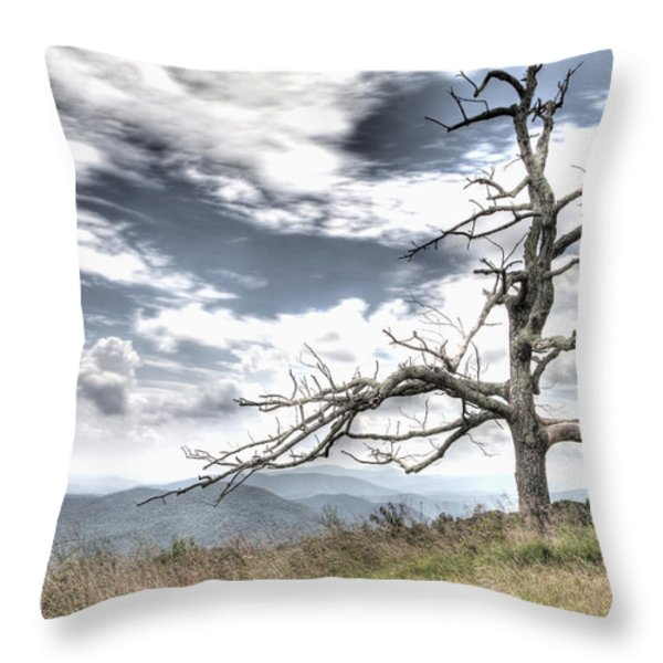 Solemn Tree Throw Pillow by Michael Clubb