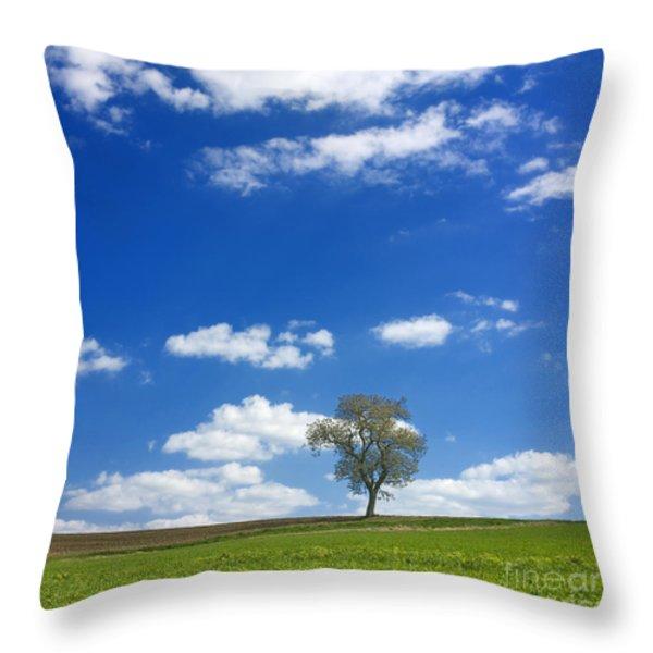 Solitary Tree In Green Meadow Throw Pillow by Bernard Jaubert