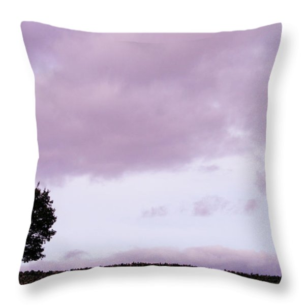 Solitude - Denbigh Moors Throw Pillow by Nomad Art And  Design