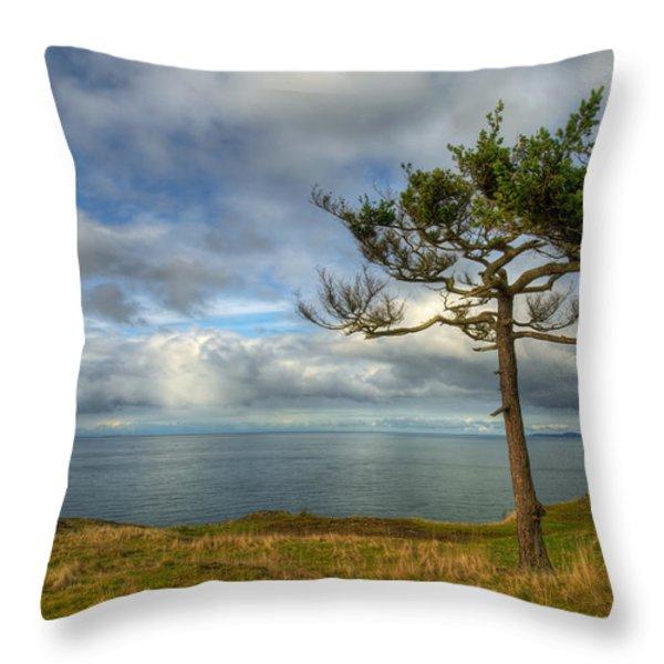Solitude Throw Pillow by Dan Mihai