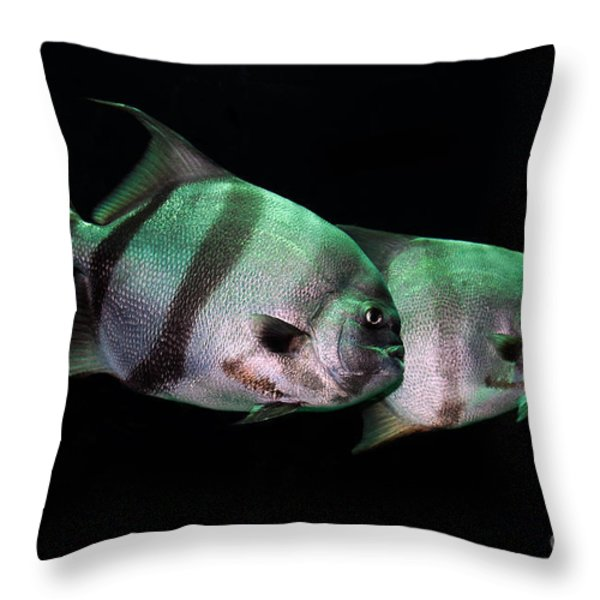 Something Fishy This Way Comes Throw Pillow by Lois Bryan