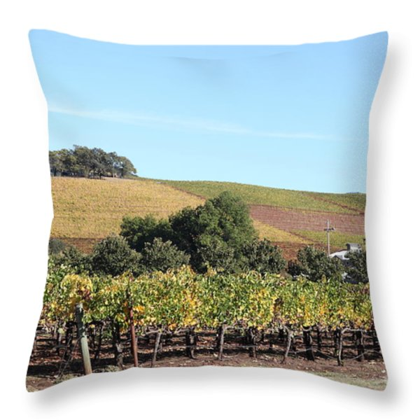 Sonoma Vineyards - Sonoma California - 5D19307 Throw Pillow by Wingsdomain Art and Photography