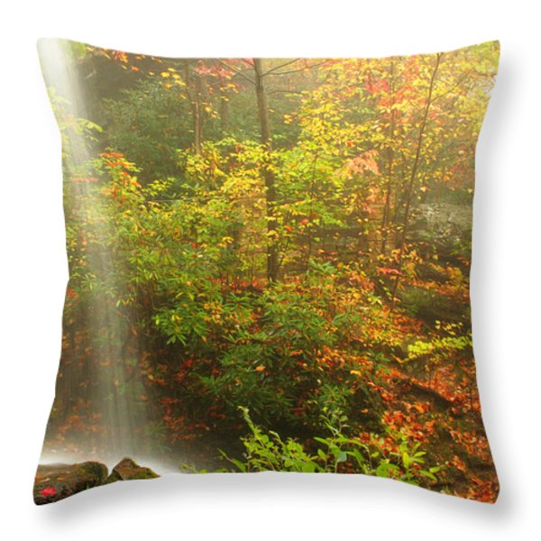 Sounds Of Autumn Throw Pillow by Darren Fisher