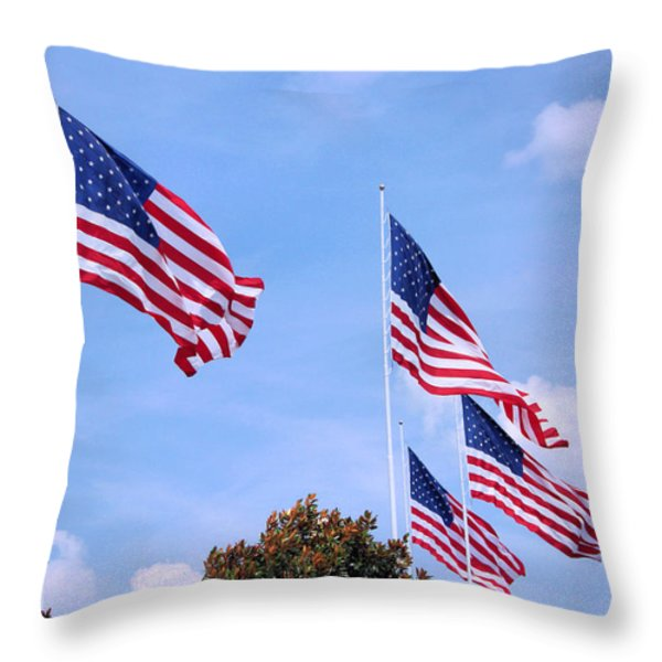 Southern Skies Throw Pillow by Kristin Elmquist