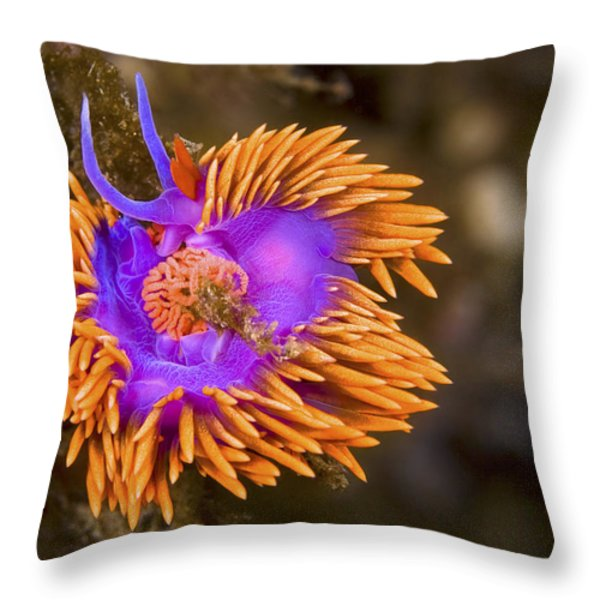 Spanish Shawl Throw Pillow by Mike Raabe