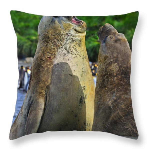 Sparring Throw Pillow by Tony Beck