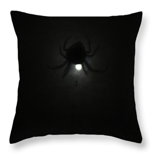 Spider In The Moonlight Throw Pillow by Kym Backland