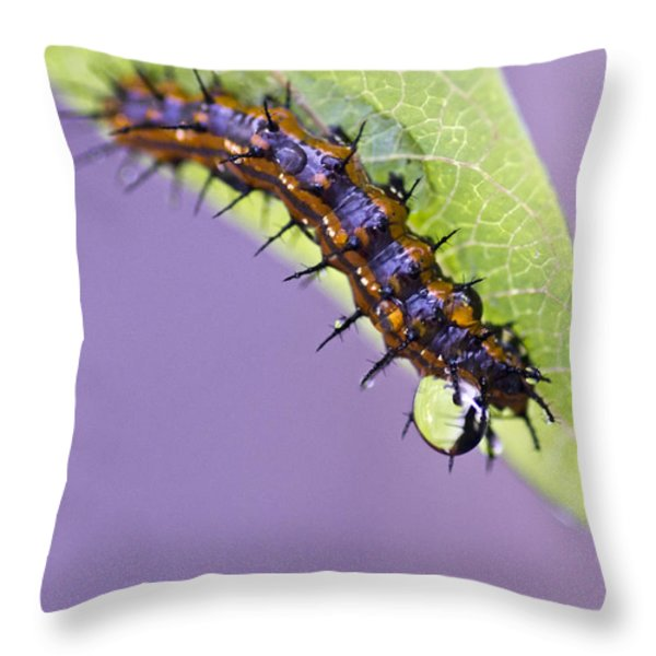 Spikes And Drops Throw Pillow by Priya Ghose