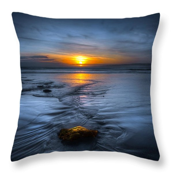 Spine Wave Throw Pillow by Svetlana Sewell
